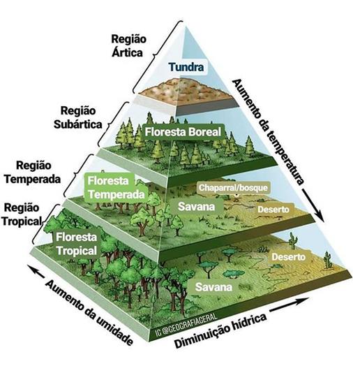 Relação vegetação x  umidade x temperatura x latitude