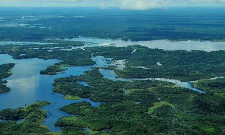 Floresta tropical e seus grandes rios